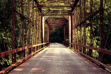 Bridge Fall Colors Cool Photo