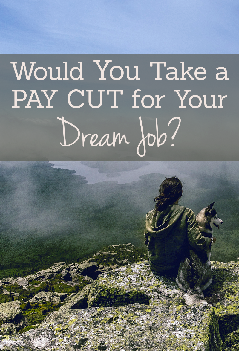 should you take a pay cut for your dream job young adult money is taking a pay cut for your dream job actually a good deal while you