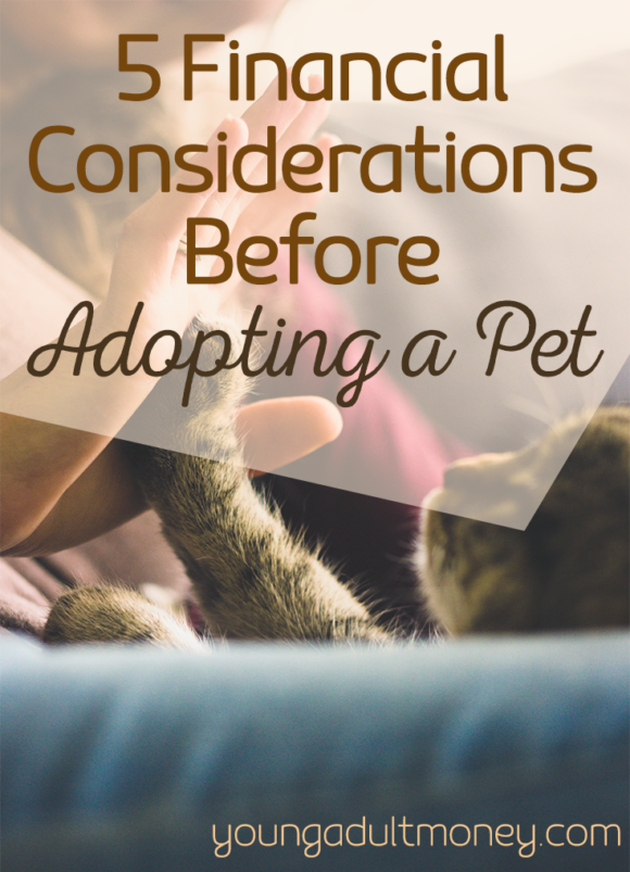 Are you thinking about adding a puppy or kitten to your family? Take these 5 financial considerations before adopting a pet into account so you can be prepared.