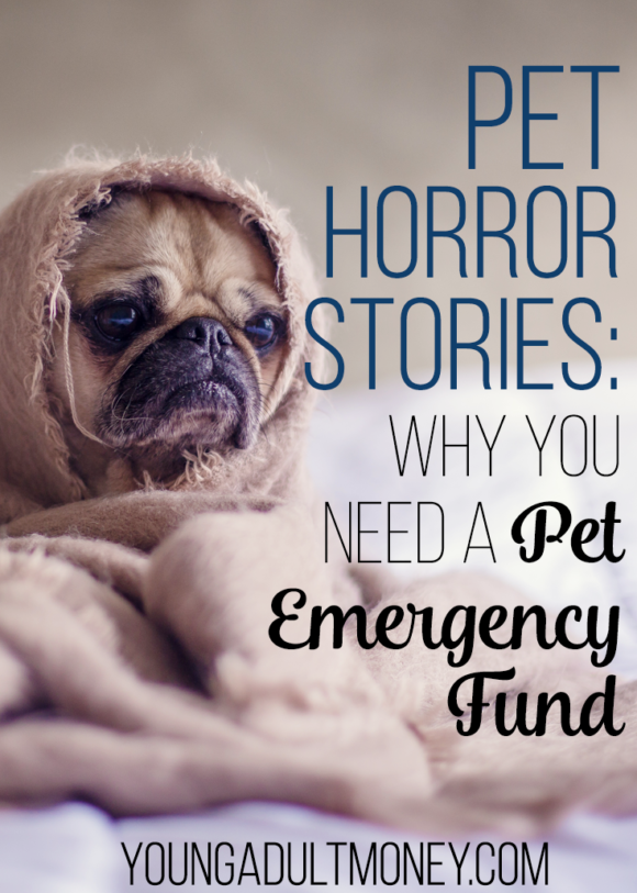 If you're a pet owner, these pet horror stories (and the huge costs these pet owners faced) may just persuade you to have a backup plan for any pet emergency.