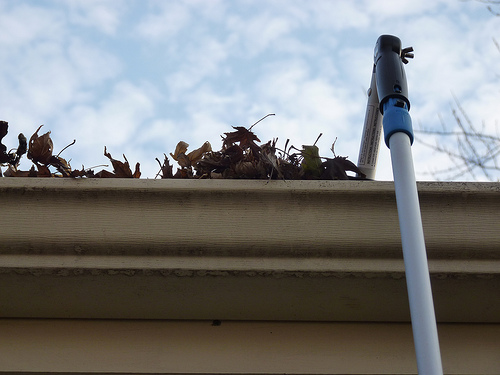 How To Clean Your Gutters Without A Ladder Young Adult Money