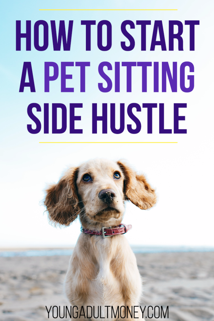 Are you passionate about animals and would like to make extra money? Let's cover who should consider pet-sitting, and how to get started.